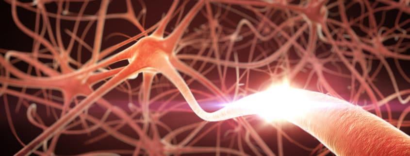 Cannabis gegen Parkinson erzielt erstaunliche Resultate