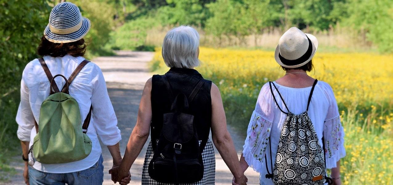 CBD Menopause