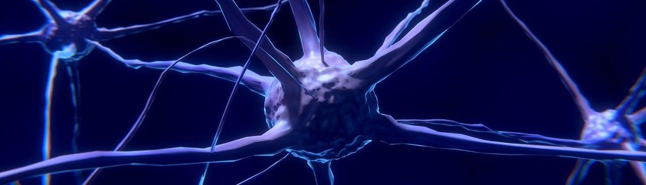 Cannabinoide bei Krankheiten von Neuronen