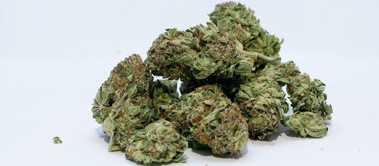 Cannabinoide gegen schelchte Haut