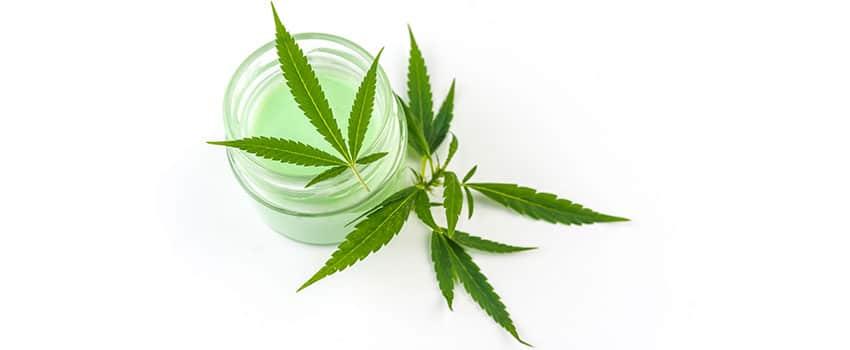 Cannabis Creme und transdermales Cannabis